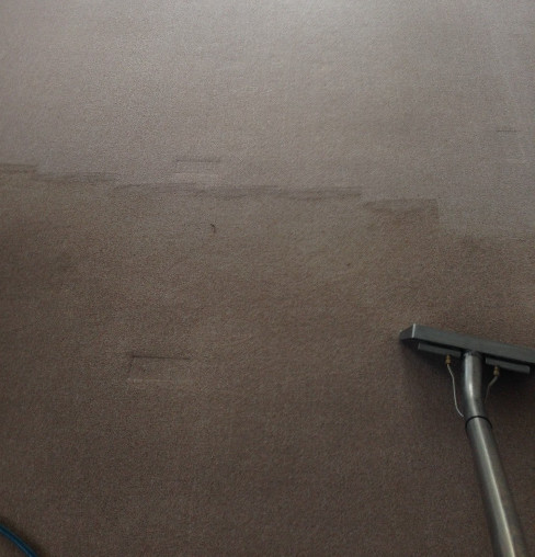 Carpet Stain Removal Doncaster